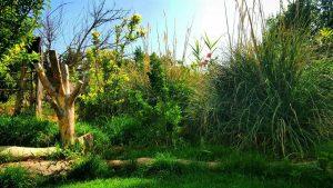 location garden photography andisheh no studio ateliye mansion emarat 207 300x169 - location garden photography andisheh no studio ateliye mansion emarat (207)