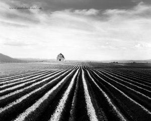 conductor lines in photography 14 300x240 - خطوط هادی در عکاسی