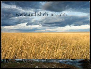 how to enhance the image quality 5 300x227 - چگونه کیفیت عکس را بالا ببریم