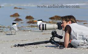 how to have a good photographic style 1 - How to have a good photographic style (1)