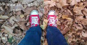how to take photos 4 300x158 - چگونه عکس های تاثیر گزار بگیریم